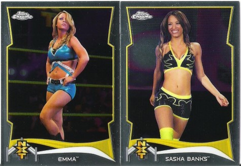 Ending on a sexier note, with two very talented NXT gals on very different trajectories..